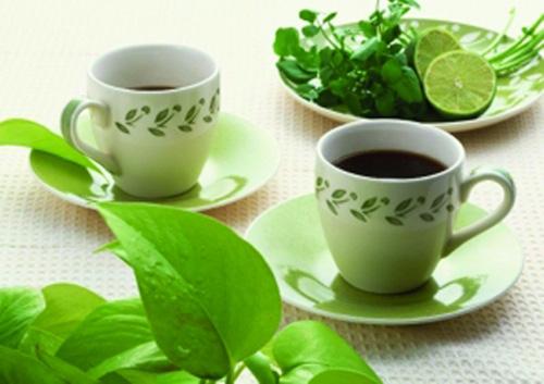 高脂血症调理药茶(三)