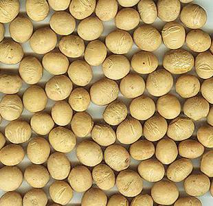关于大豆黄卷