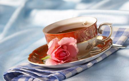 秋季防病增强体质 不妨采用茶疗法