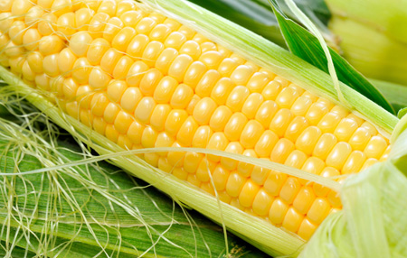 玉米:营养专家肯定的最佳丰胸食品
