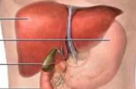 甲肝患者的饮食调理