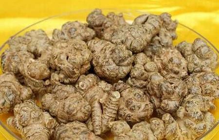 中药材田七价格持续低迷 种子红籽却涨超十倍
