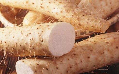秋季进补七大状元 山药可健脾益胃