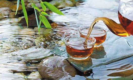 改善瘀阻肥胖药茶——大黄茶