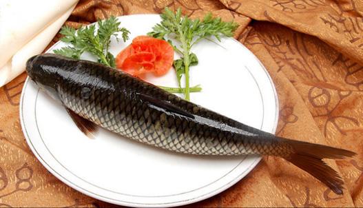 常吃鱼可以暖胃