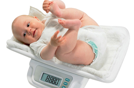 10~12个月:莫让宝宝长太胖