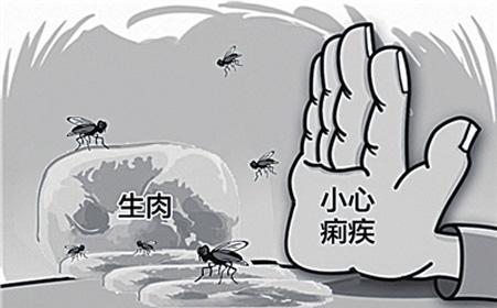 细菌性痢疾的预防和调养