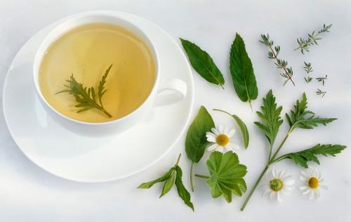 治疗尿路结石的药草茶