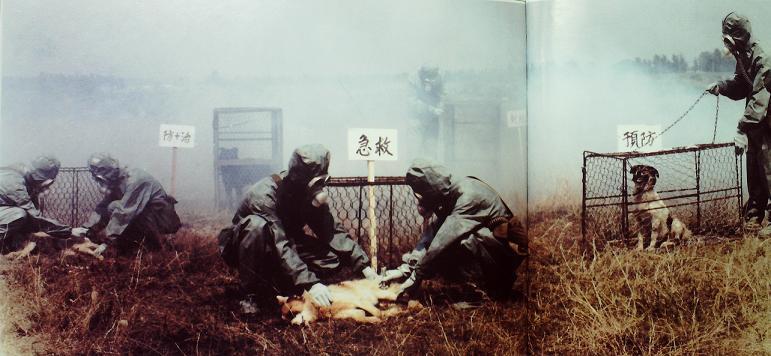 特重武器伤害防护的生物试验
