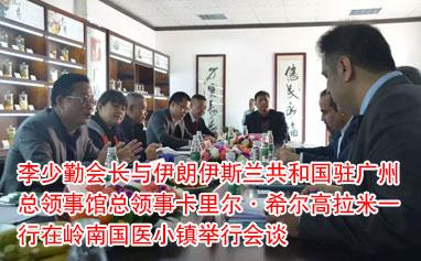 李少勤会长与伊朗伊斯兰共和国驻广州总领事馆总领事卡里尔·希尔高拉米一行在岭南国医小镇举行会谈