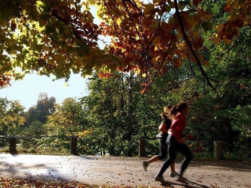 秋季运动小知识