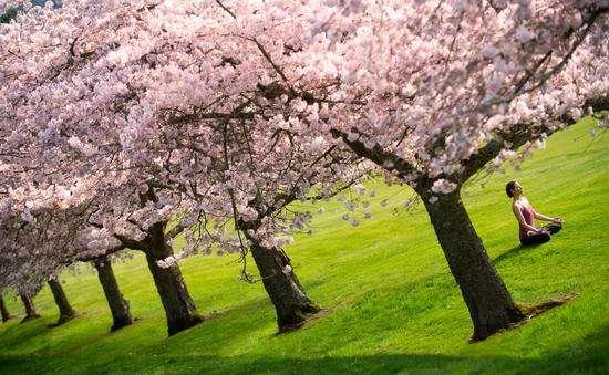 春季养生需特别注意的六个点