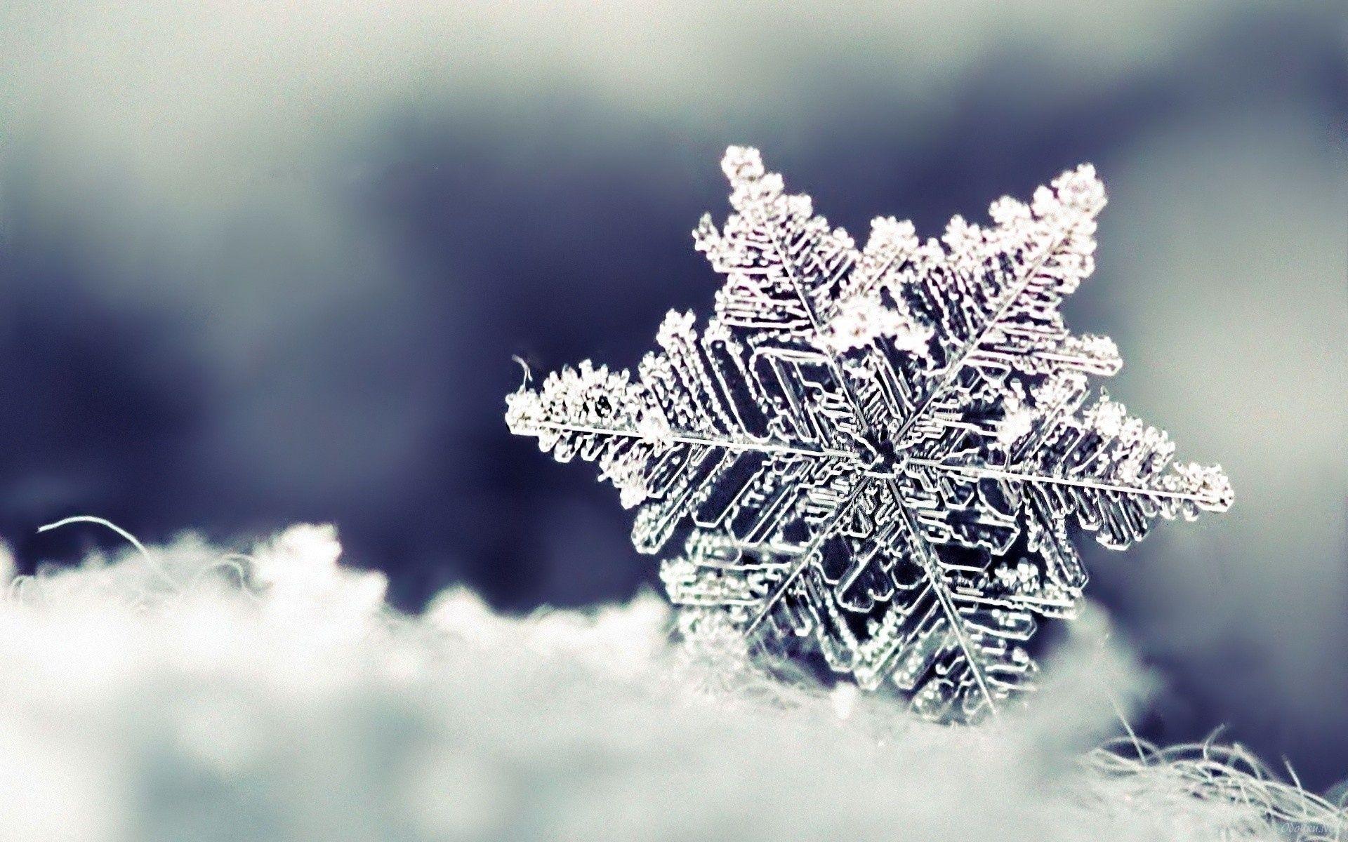 冬季养肾警惕五个危险信号