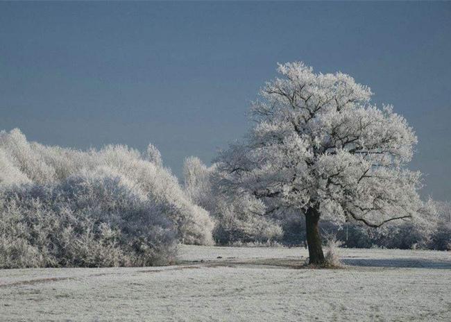 冬天驱寒又暖身的小妙招