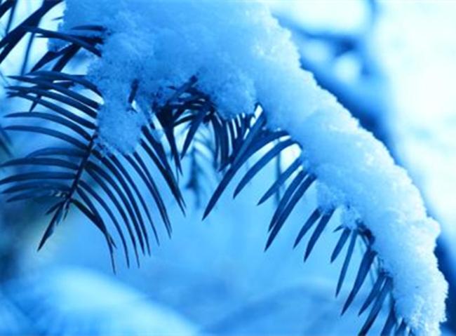 冬季养肾运动