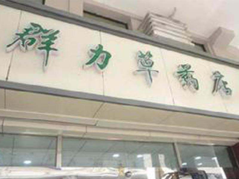 群力草药店