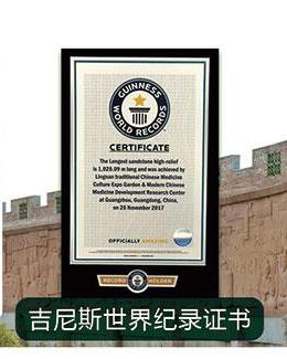 热烈庆祝中医药历史文化浮雕景观长廊获吉尼斯世界纪录证书!