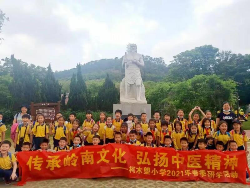 国医小镇丨柯木塱小学中医药文化+劳动实践研学活动